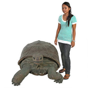 Grand-Scale The Galapagos Tortoise Statue - NE80124 - Design Toscano