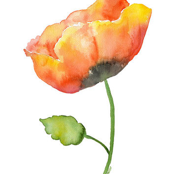 Poppy Watercolor