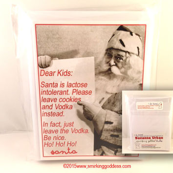 Funny Santa Christmas Card Set of Six Greeting Cards with Envelopes