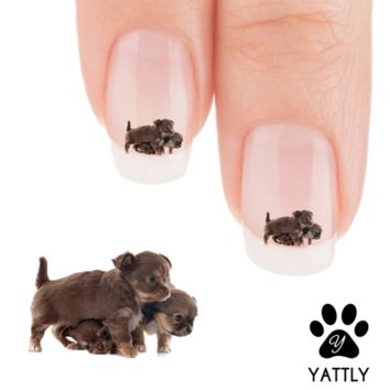 Chihuahua Friends Forever! Nail Art Decals (Now 50% More FREE)