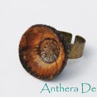 Rustic Ring Unique Natural Jewelry Handcrafted by AntheraDesign
