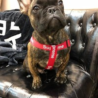 Supreme dog leash and harness