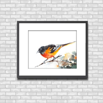 Baltimore Oriole Watercolor Painting Art Print, Bird Art Watercolour Painting Art, Wall Art