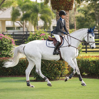 Grand Prix TechLite Special Edition Rylie | Dover Saddlery