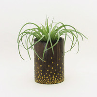Succulent Planter, Wood Planter, Round Planter, Succulent Pot, Air Plant Holder, Modern Planter, Indoor Planter, Wooden Planter, Gold Dots