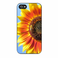 Sun Flower Shine iPhone 5s Case
