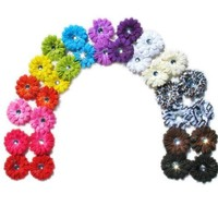 Ema Jane - Small Gerber Daisy Clips (Double Matching Colors, 2 Sets of 17 (34 Total))