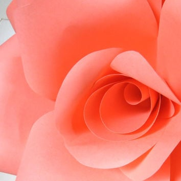CORAL paper wall rose - floral decor - wall art paper sculpture - Flower Taxidermy No.88