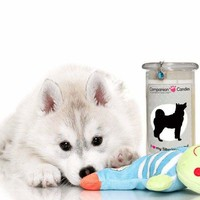 I Love My Siberian Husky! - Companion Candles