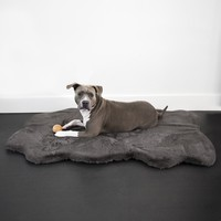 Ruby® Orthopedic Luxury Dog Bed Rug