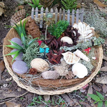 Terrarium Kit, Fairy Garden Kit, Fairy Garden Supplies, Fairy Kits, Fairy House Kit, Miniature Garden Supplies, Miniature Fairy Garden Items