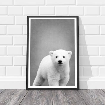 Bear Print 8x10 Nursery Animal Prints Nursery Baby Bear Wall Art Black and White Animal Print Black and White Nursery Nursery Animals Zoo