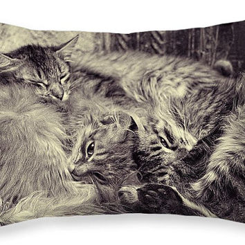 Cat Pillow, Sleeping Cats, Cute Gift, Black and White, Couch Cushion, Sweet, Kittens. Animals, Photo Pillow Case, Home Decor, 20x14, Nursery