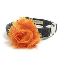 Dog Collar Flower - Chiffon Dog Flower - Dog Collar Accessory - Vintage Dog - Shabby Chic Dog - Collar Attachment - Orange Dog Collar Add On
