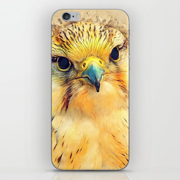 Falcon bird #falcon #bird #animals iPhone Skin by jbjart
