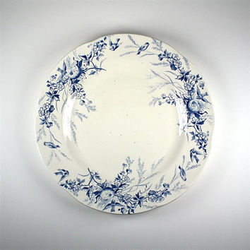 divine antique french porcelaine entree, dessert plate, Creil and Montereau, birds and nests, early 20th century home
