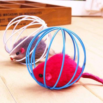 Play Rat In A Cage  Your Cat's Favorite Toy