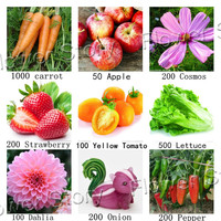 9 kinds 3000 pcs Garden Fruit Plant Vegetable flower onion pepper carrot apple tomato strawberry seed  Delicious free shipping