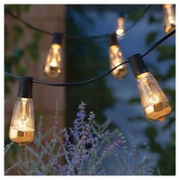 10L Lt Vintage Clear Bulb String Lights with Gold on Bottom - Smith & Hawken™