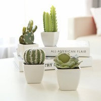 Set of 4 Artificial Mini Succulent & Cactus Plants in White Cube-Shaped Ceramic Pots, by MyGift