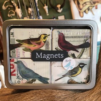 Birds and Nests Magnet Set