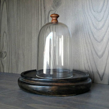 Midcentury cloche / Round wooden base / Display Dome / Cloche and base / Bell Dome / Jewelry Display / succulent / flower arrangement