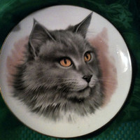 Duchess Bone China England Angora Grey Cat Collectible Plate Vintage