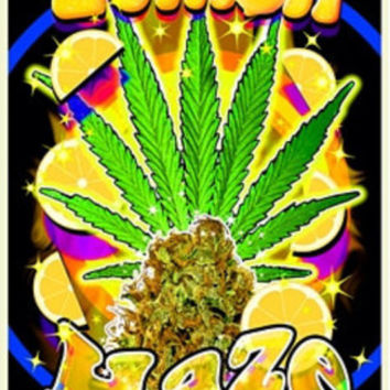Lemon Haze Pot Marijuana Blacklight Poster Print