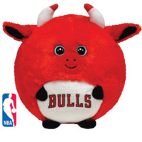 CHICAGO BULLS in Ty Store