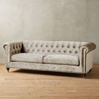 Slub Velvet Lyre Chesterfield Collection, Hickory