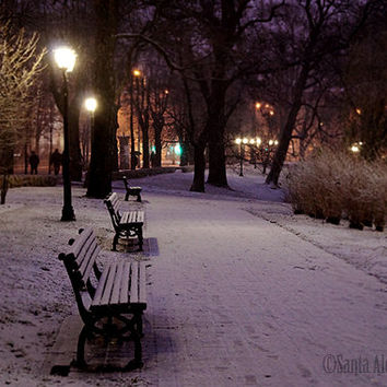 Winter view in a park in Riga, Latvia - Fine Art Photography, 8x12 print, winter photography, snow photography, night scene photo, wall art
