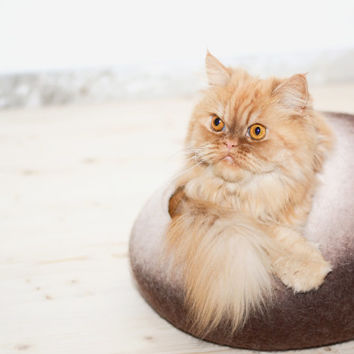 cat bed, brown beige, cat cave, pets bed, house, vessel