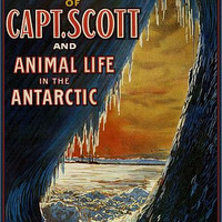 Capt. Scott and Animal Life in the Antarctic Poster