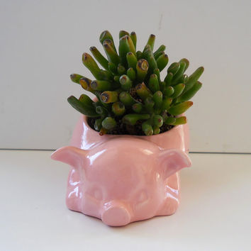 Ceramic 80s Pig Planter Vintage Design in Cotton Candy Pink Succulent Cactus Planter