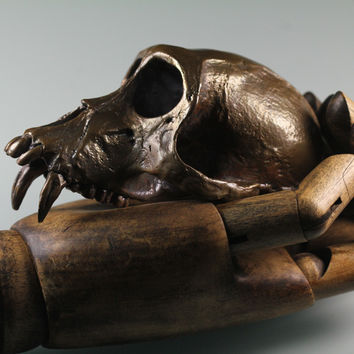 Monkey Skull in purified recycled bronze lost wax life cast made in NYC