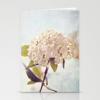 Summer Love Stationery Cards by Dena Brender Photography