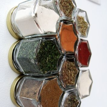 PANTRY Spice Kit: Graduation Gift Idea! Perfect set for someone starting out their first kitchen. Gift Idea for Brother or Sister.