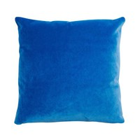 Blue Parrot Pillow by Consort