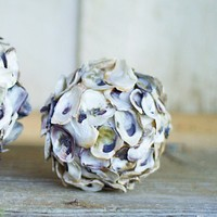 Oyster Shell Sphere (Set of 4)