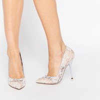 Paper Dolls Rose Blue Lace Pointed Court Shoes at asos.com