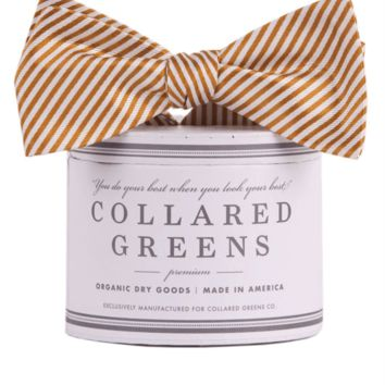 CG Stripes Bow in Gold by Collared Greens