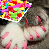 New Fashion Design 20PCS Soft Cat Pet Nail Caps Claws Paws Off Control + 1 Adhesive Glue Size XS S M L