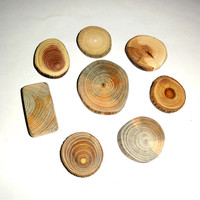 Jewelry supplies. Pendant findings 8 pieces. strong natural wood. Jewelry supply findings. Natural wood colors, texture, resistant, durable.