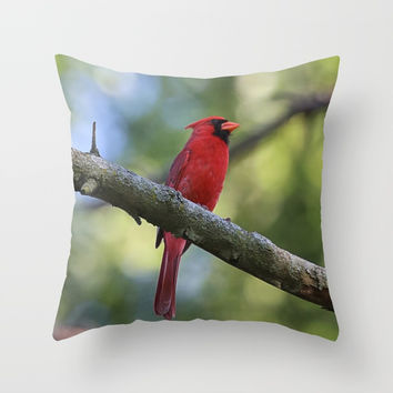 Cardinal Series I Throw Pillow by Theresa Campbell D'August Art