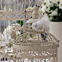 I heart shabby chic