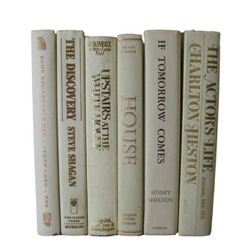 White Off-White Decorative Books Curated with Vintage Books, S/6