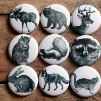 woodland animal fridge magnets set of nine pin badge button cab charm