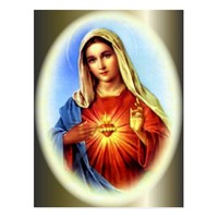 Blessed Virgin Mary - Mother of God Postcard