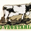 No More Industries — GO VEGETARIAN Pin
