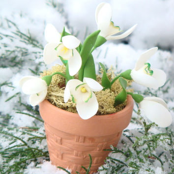 Snowdrops Miniature Floral Arrangement. Clay floral arrangement. Spring flower arrangement. Rustic, country home decor. Gift for home.